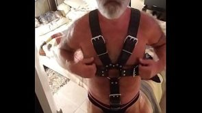 Bateing in leather harness ect for a request